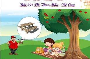 bài giảng powerpoint lớp 4 bài 27 ve cây