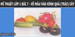 Bài giảng điện tử mĩ thuật 1 bài 7 vẽ màu vào hình quả trái cây