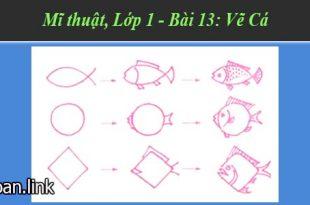 giáo án mĩ thuật lớp 1 bài 13 vẽ cá