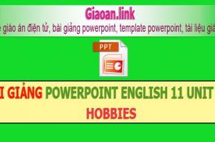 bài giảng powerpoint english 11 unit 13 hobbies