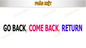 phân biệt go back come back return