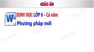 giao an sinh hoc lop 6 phuong phap moi