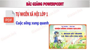 bai giang powerpoint tnxh lop 1 cuoc song xung quanh