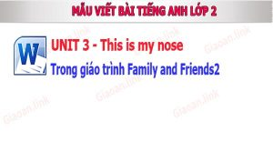 bai tap viet unit 3 this is my nose family ands friends2